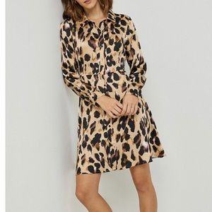 Fun, trendy animal print dress!  Washable! NWT